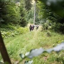 Bobbahn in Winterberg - Sommer 2016 (33)