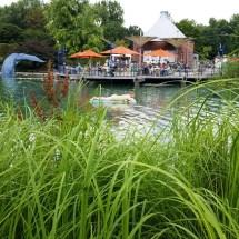 Maxipark Sommer 2016 (57)