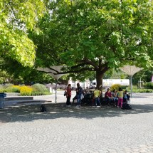 Maxipark Sommer 2016 (72)