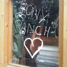 Ponyranch Arnsberg - Sommer 2016 (1)