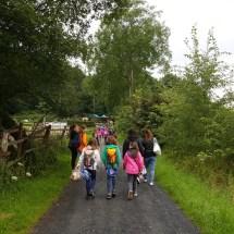 Ponyranch Arnsberg - Sommer 2016 (2)