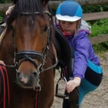Ponyranch Arnsberg - Sommer 2016 (29)