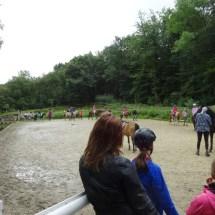 Ponyranch Arnsberg - Sommer 2016 (47)