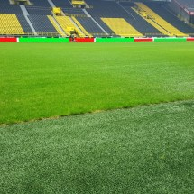 BVB Stadiontour - Sommer 2018 (63)