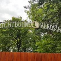 Freilichtbühne - Sommer 2018 (2)