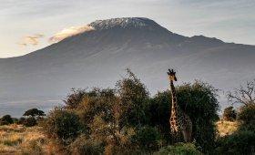 Why Climb Mt Kilimanjaro