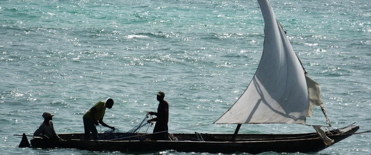 Zanzibar Fishing and Holiday