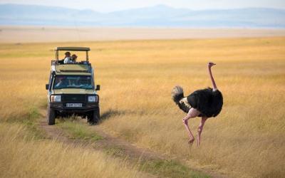 15 Days Classic Safari Kenya & Tanzania + Zanzibar Beach