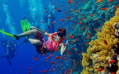 3 Days Snorkeling Excursion Tour In Zanzibar Beach