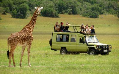 7 Days Private Family Safari Experience in Tanzania
