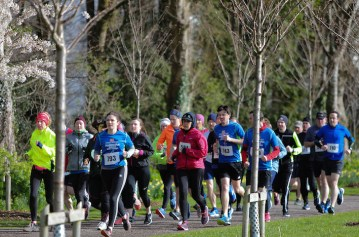 Athletes competing in the Hardman Ireland 10km run