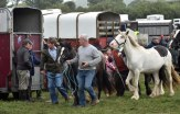 Business was brisk at the horse fair this Saturday morning
