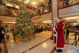 Santa Claus switches on the Christmas tree lights to mark the festive season