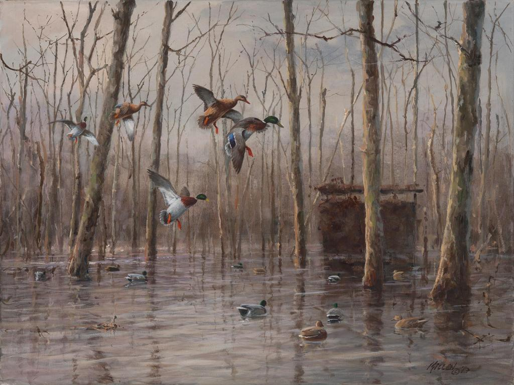 """Setting In"" - Mallard Ducks - Original Painting by Jim Killen"