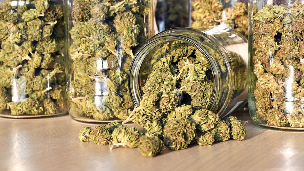 Marijuana Life Hacks: 10 Tips to Save Any Stoner's Day