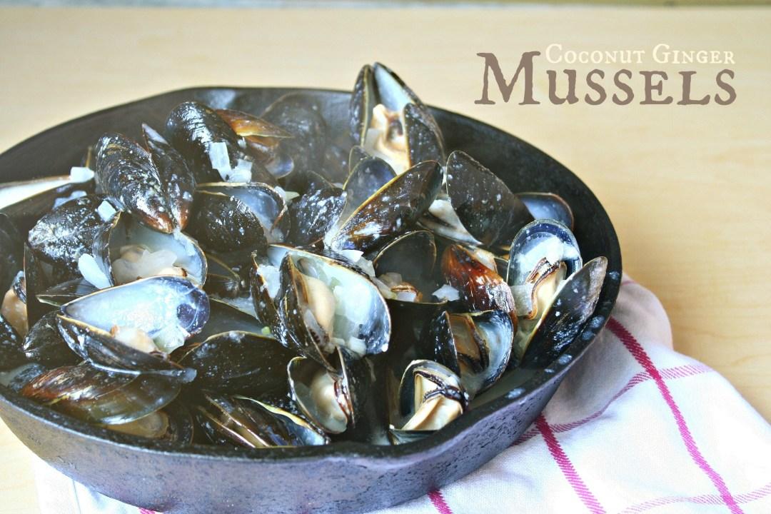 coconut ginger mussels header