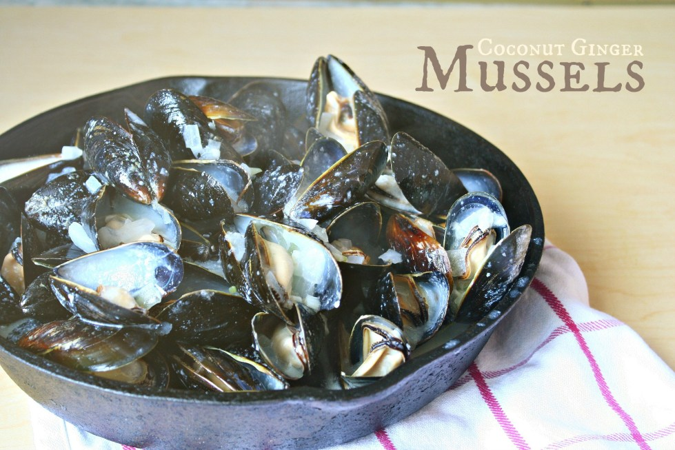 coconut ginger mussels header