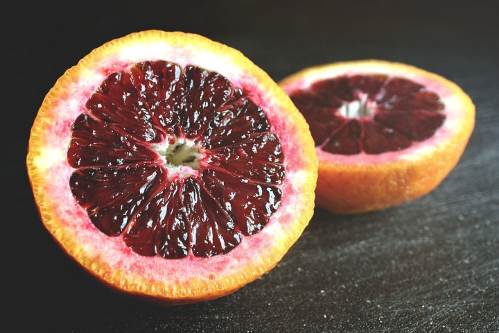 blood oranges 2