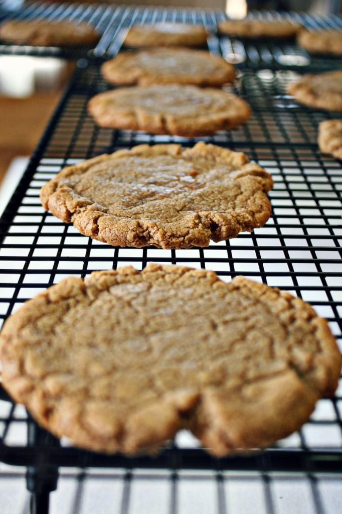 cookie-butter-cookies-6
