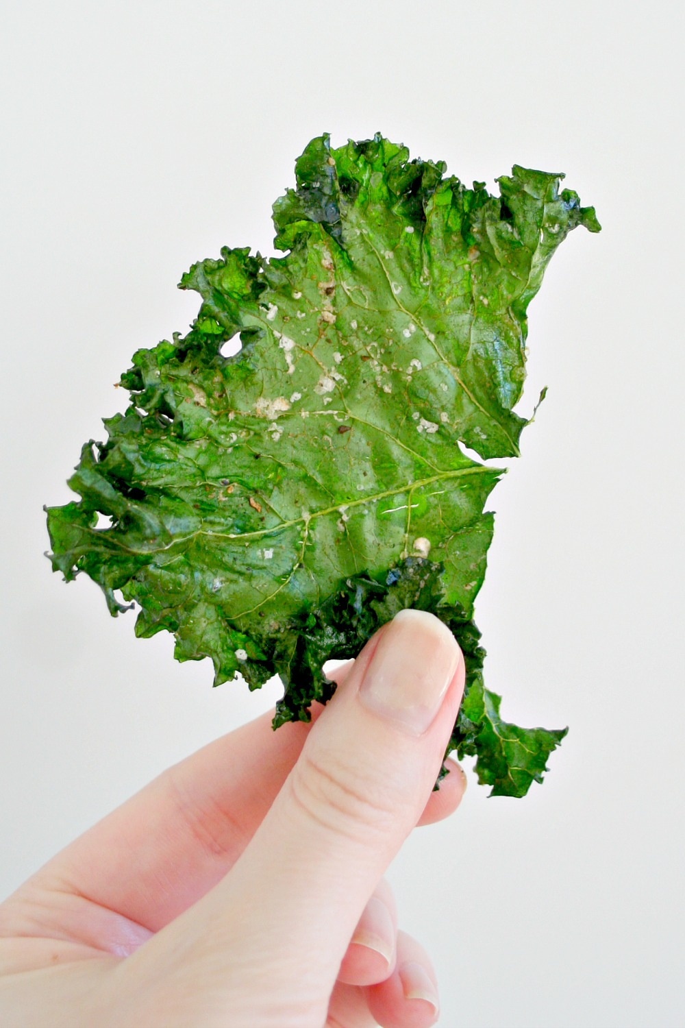 Perfect Kale Chips 4