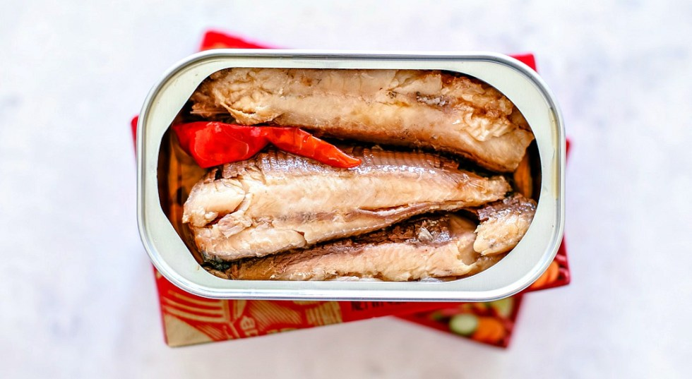 Opened can of sardines