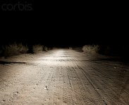 Dirt Road at Night Image by © Sam Diephuis/Corbis