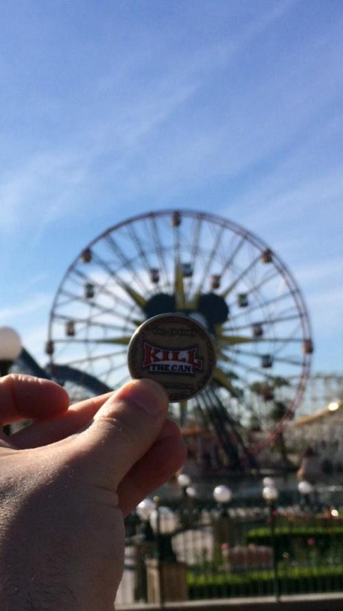 fire10257 - Disneyland & California Adventure