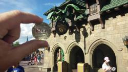 Mike Land Disney World 6.22.2015