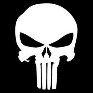 flash avatar