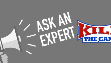 Photo of Ask an Expert Sessions in Live Chat!