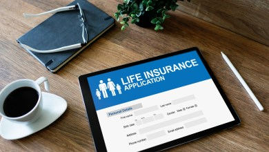 Photo of Dip and Life Insurance: Essential Things You Need To Consider