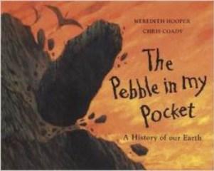 The Pebble in my Pocket bookcover
