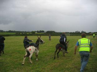 fieldday2006_024