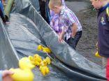 ducks2011_013
