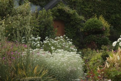 Kilmurry Nursery garden 1