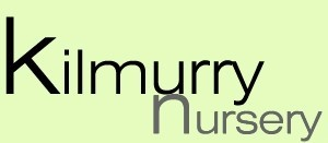 Kilmurry Nursery Logo