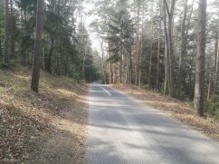 hinunter Richtung Bad Erlach