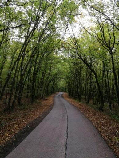 Richtung Schattendorf
