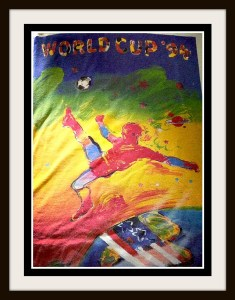 World Cup 1994 - World Cup Fever - kimberlymitchell.us