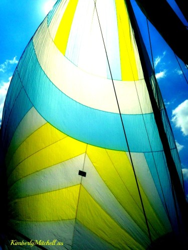 Spinnaker sail - Ready to Come About - kimberlymitchell.us