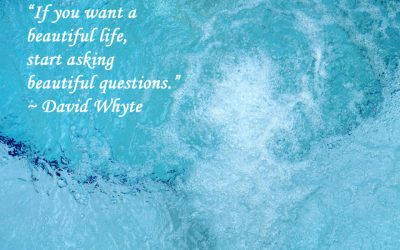 The Power of Beautiful Questions