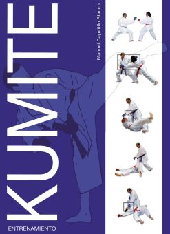 Kumite - Entrenamiento