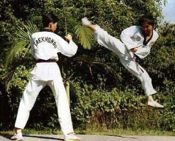 Los Beneficios del Taekwondo