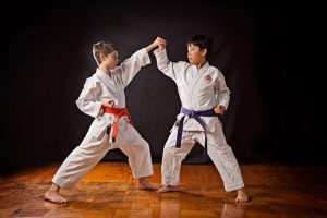 Mejores Karateguis para niños 2020 portada
