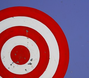 Target - referrer management in professional service firms