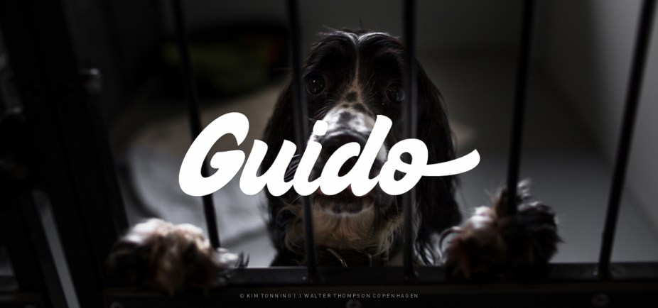 Guido_Galleri
