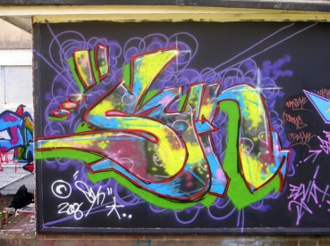 SYN 2006