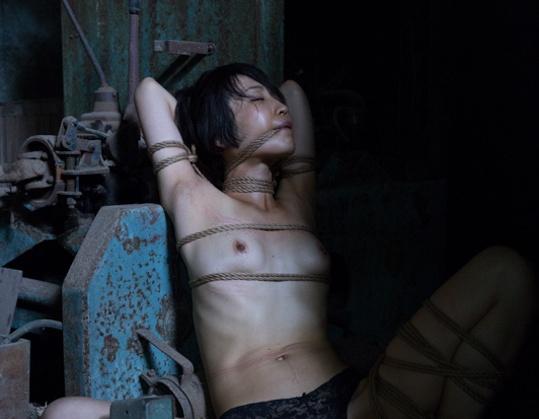 Three Photo Sets by Hajime Kinoko Kinbaku Today 5