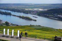 Aussicht Rheintal