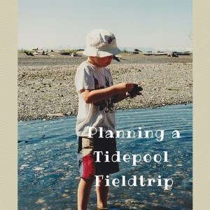 planning a tidepool fieldtrip